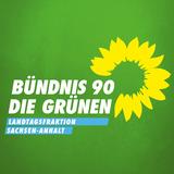 gruene-fraktion-lsa